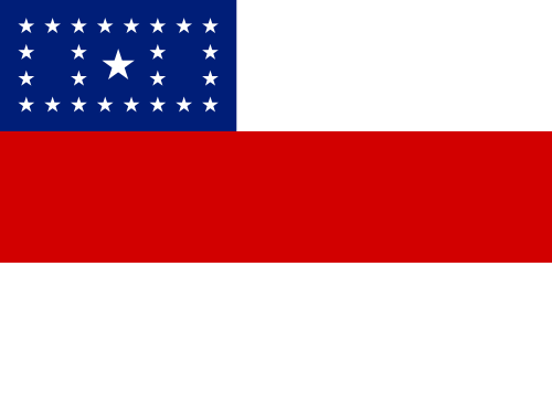 bandeira Amazonas
