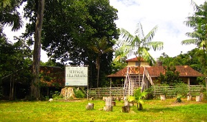 Museu do Seringal